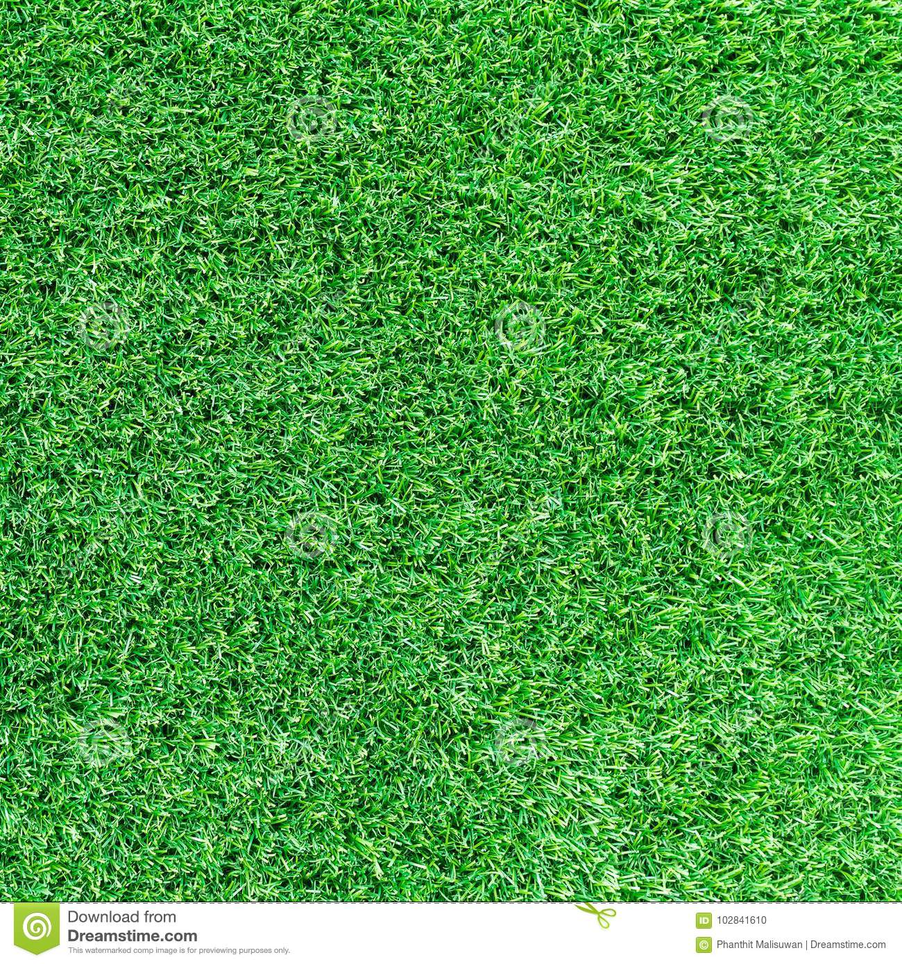 Artificial green grass texture or green grass background for golf course. soccer field or sports background