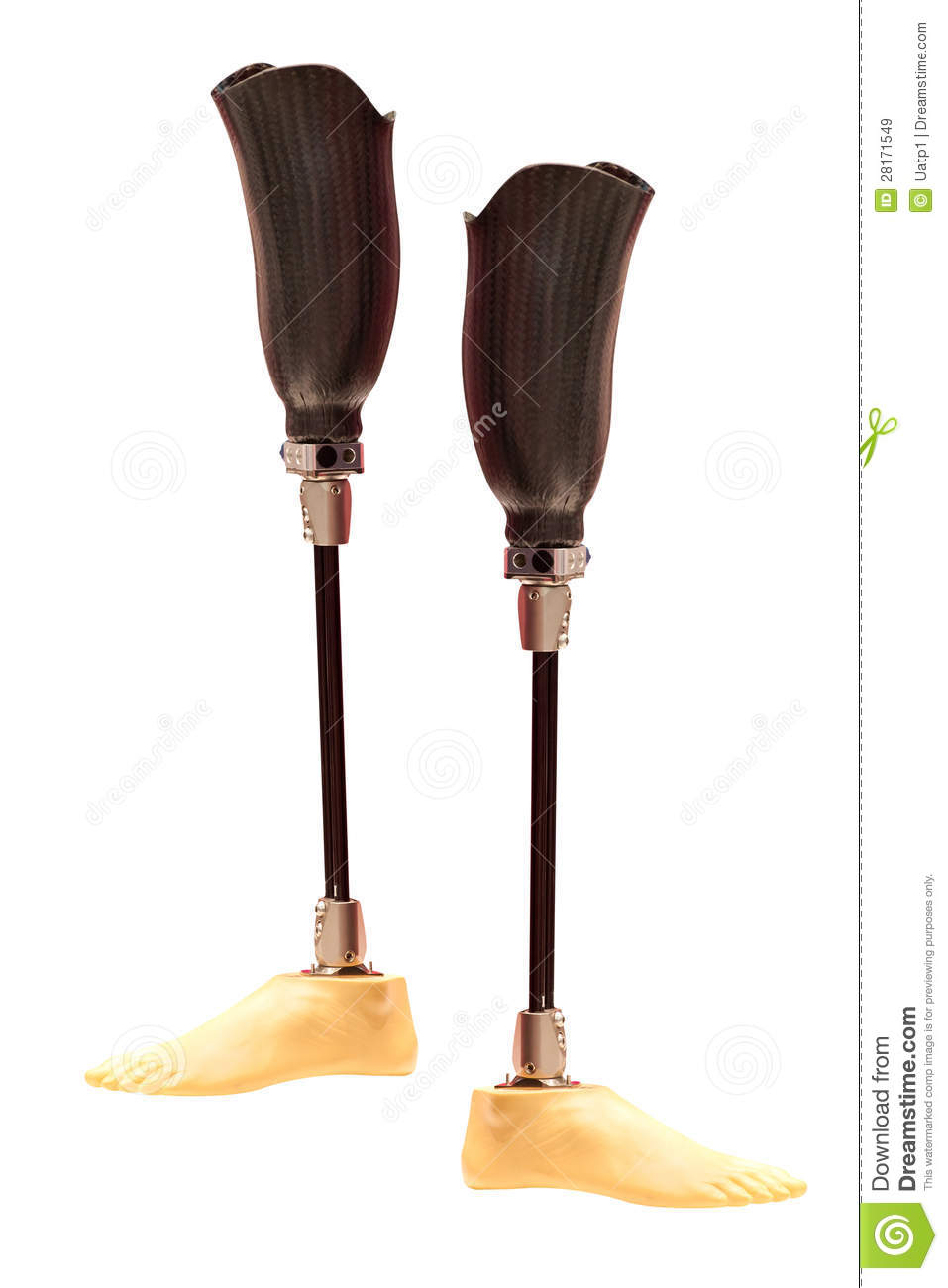 artificial limbs Artificial limbs market report categorizes the global market by product (upper extremity, lower extremity, sockets, and liners), technology (cosmetic prosthetics.