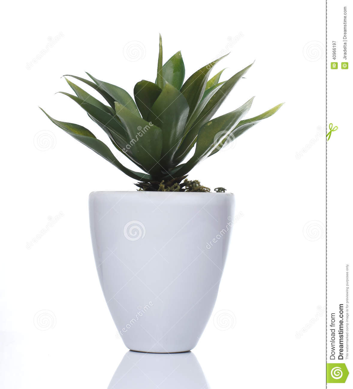 28  Plants For Small Pots Small Dark Grey Plant Pots Set Of