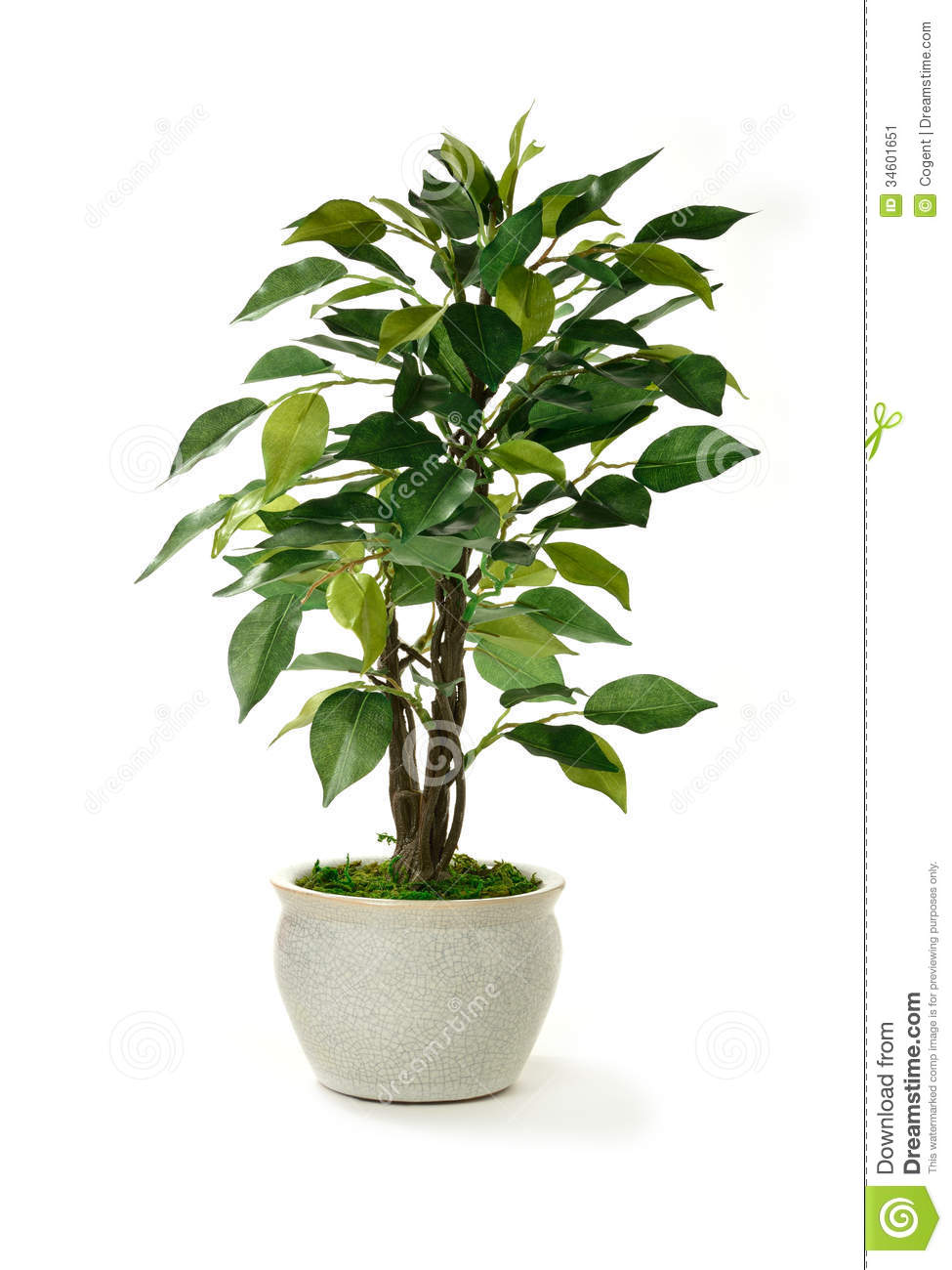 Artificial Tree Stock Image Image 34601651