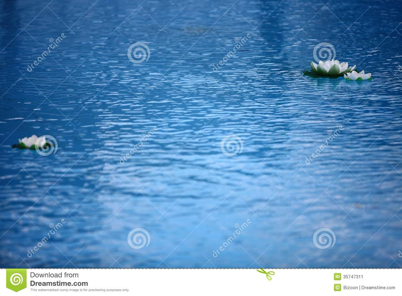 Artificial water lilly stock image image 35747311 for Artificial pond water