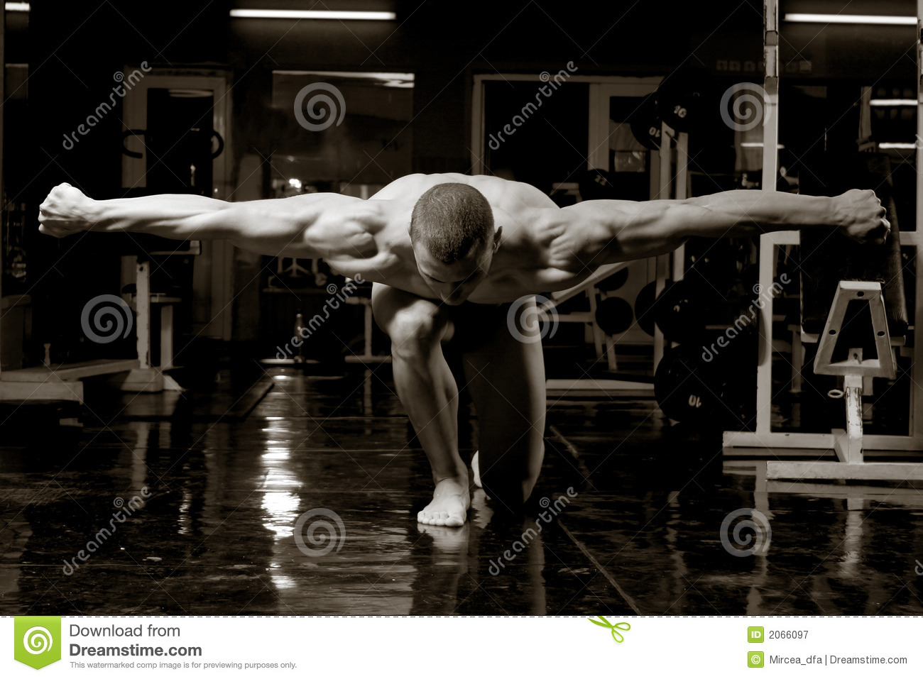 Artistic bodybuilder stock image. Image of healthy, muscle - 2066097 for Bodybuilding Art Photography  174mzq