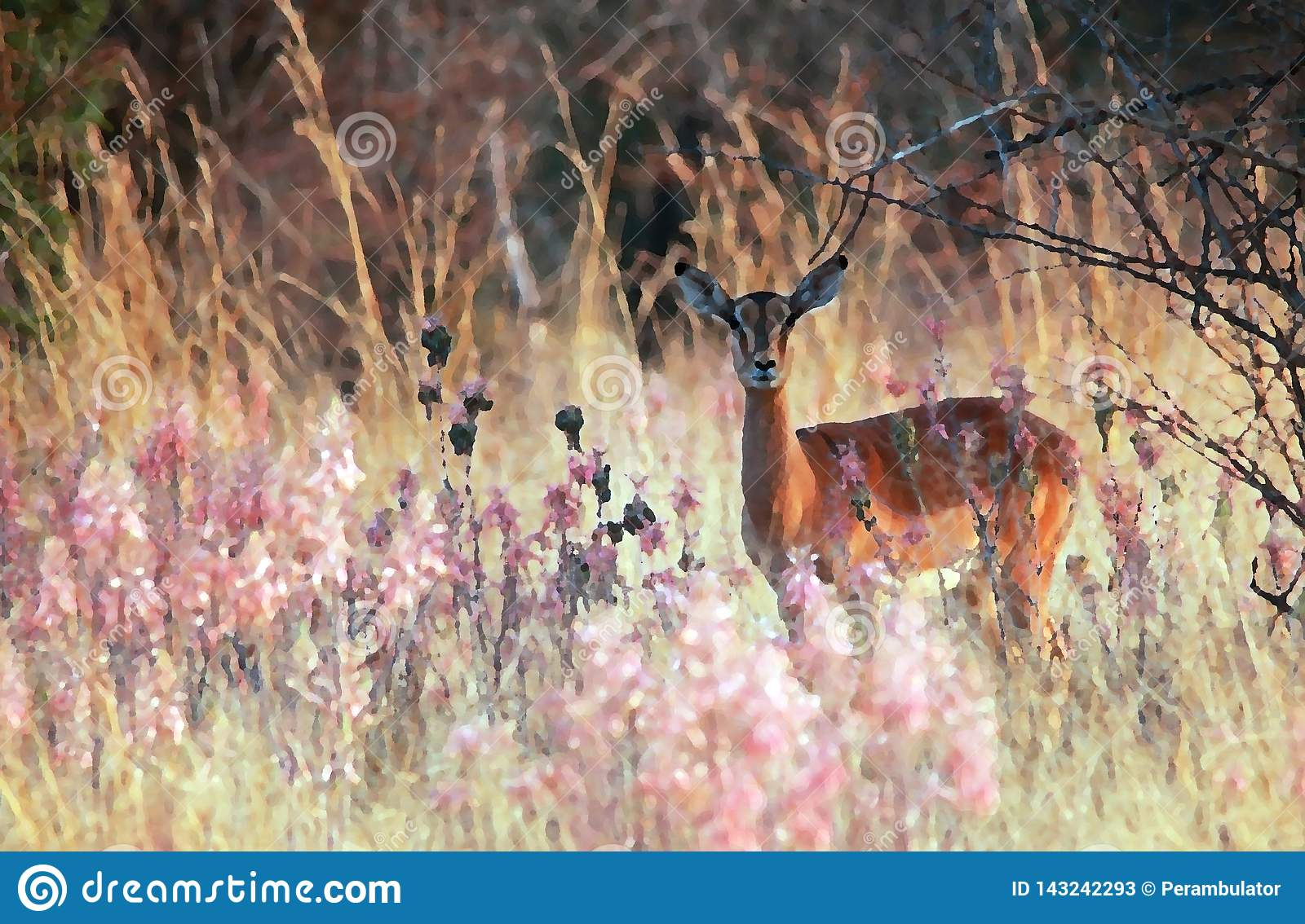 ARTISTIC EFFECT ADDED TO IMPALA BUCK IN THE VELD