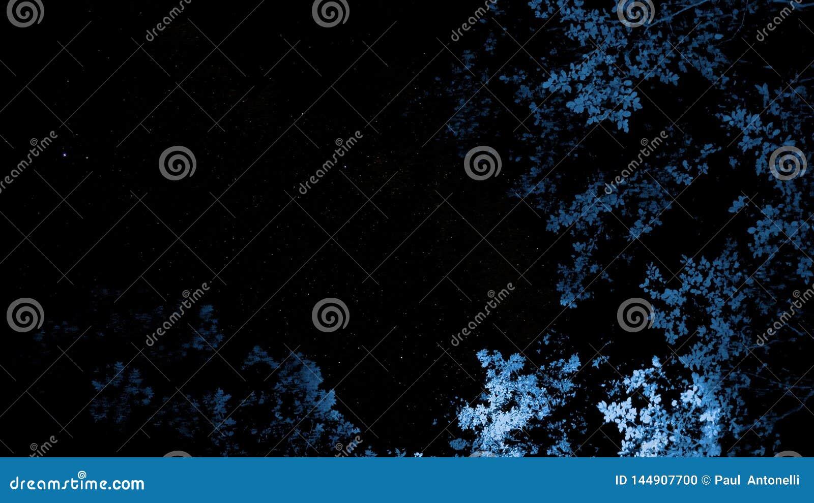 Artystyczni nieba z nad błękitni drzewa