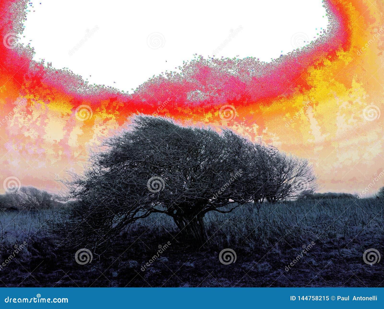 Artystyczny straszny windblown drzewo - jądrowy styl
