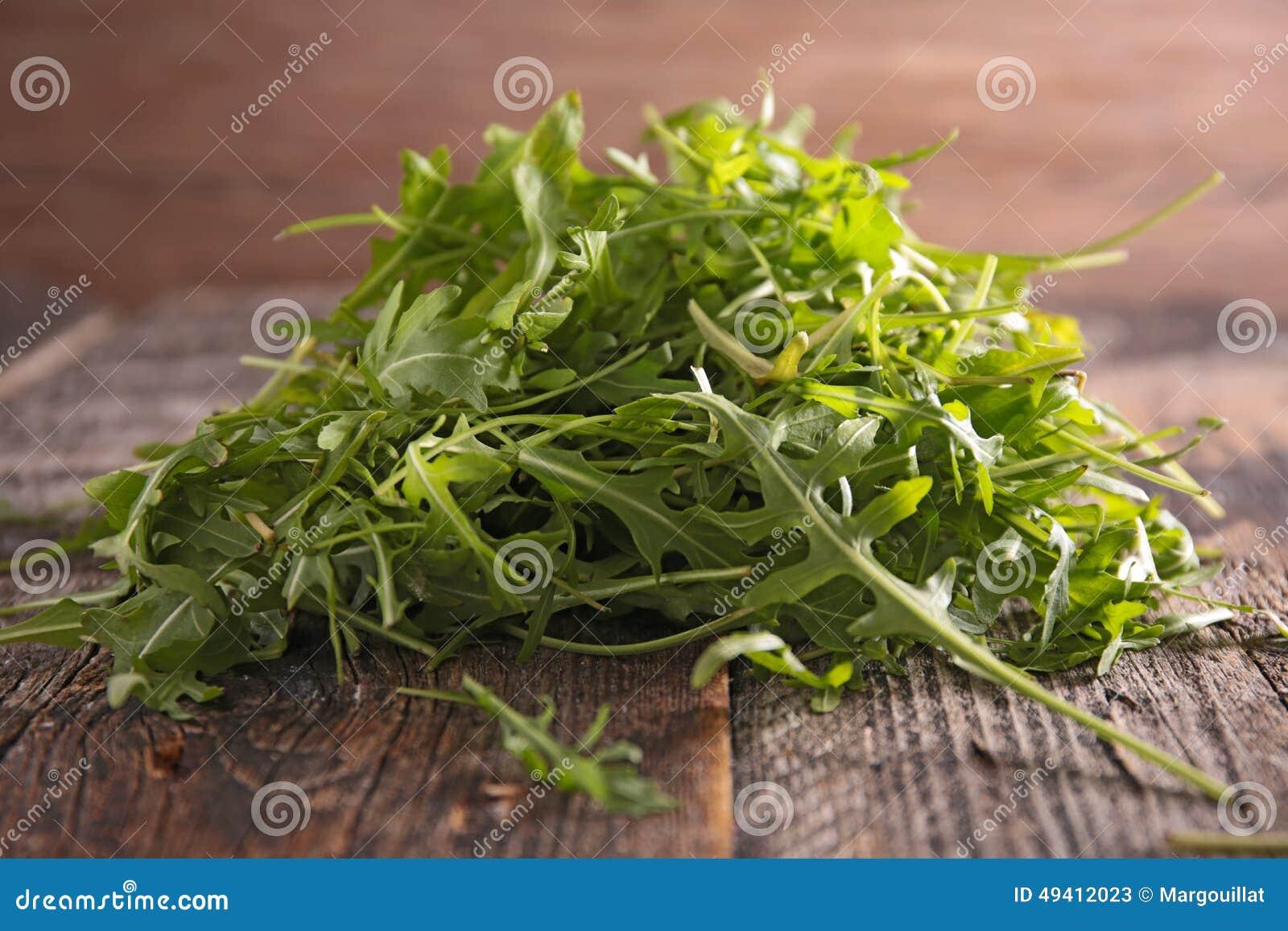 Download Arugula stockbild. Bild von salat, diät, kopfsalat, abendessen - 49412023