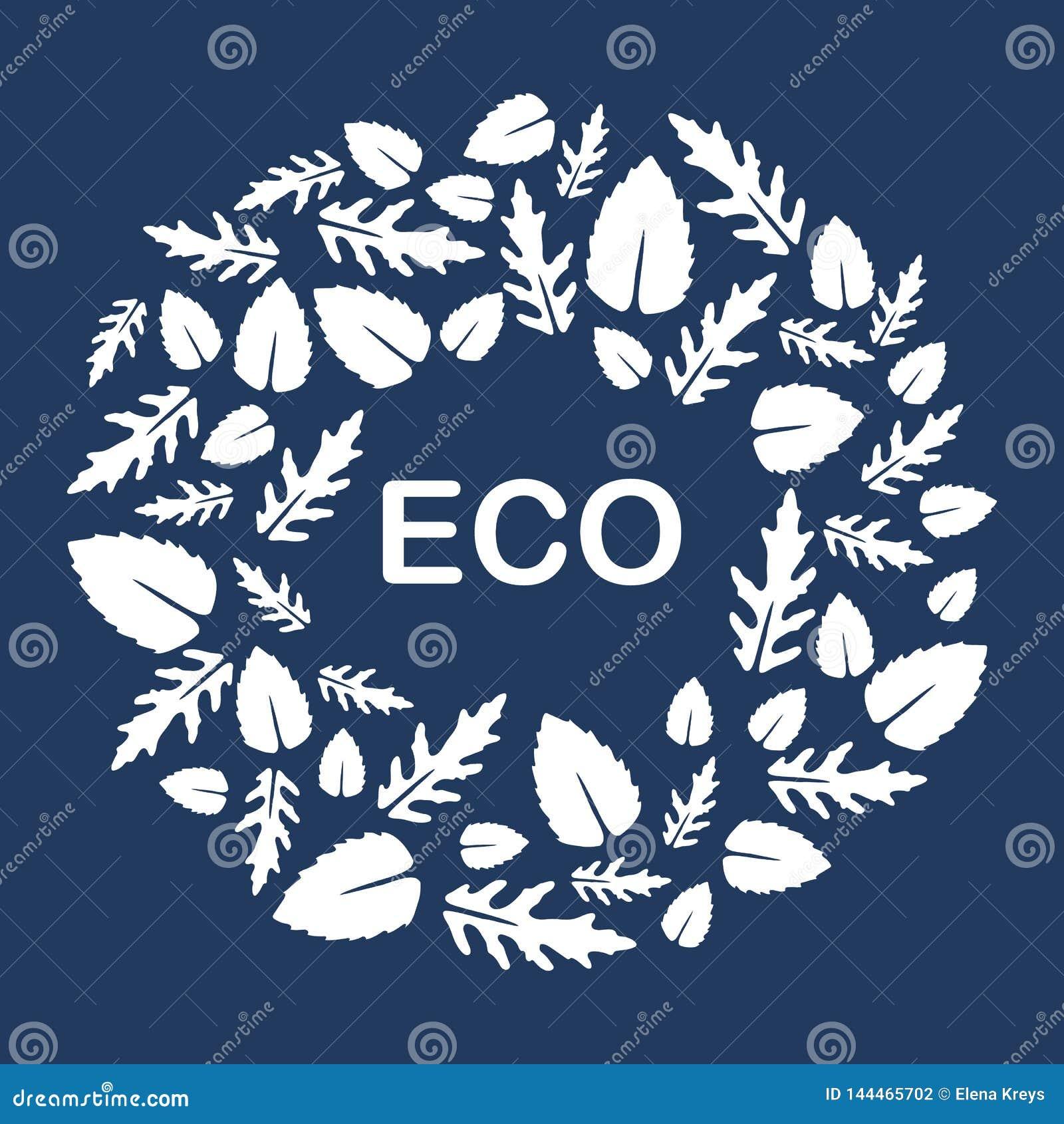 Arugula, hojas de la albahaca Eco, vegano, bio, orgánico