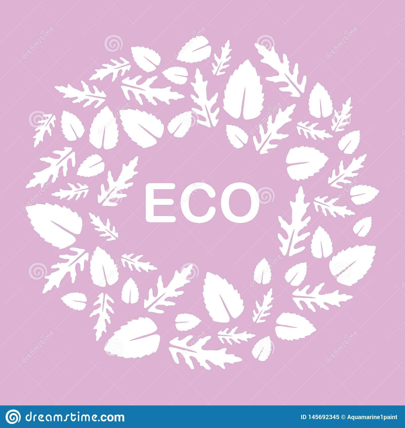 Arugula, hojas de la albahaca Eco, vegano, bio, org?nico