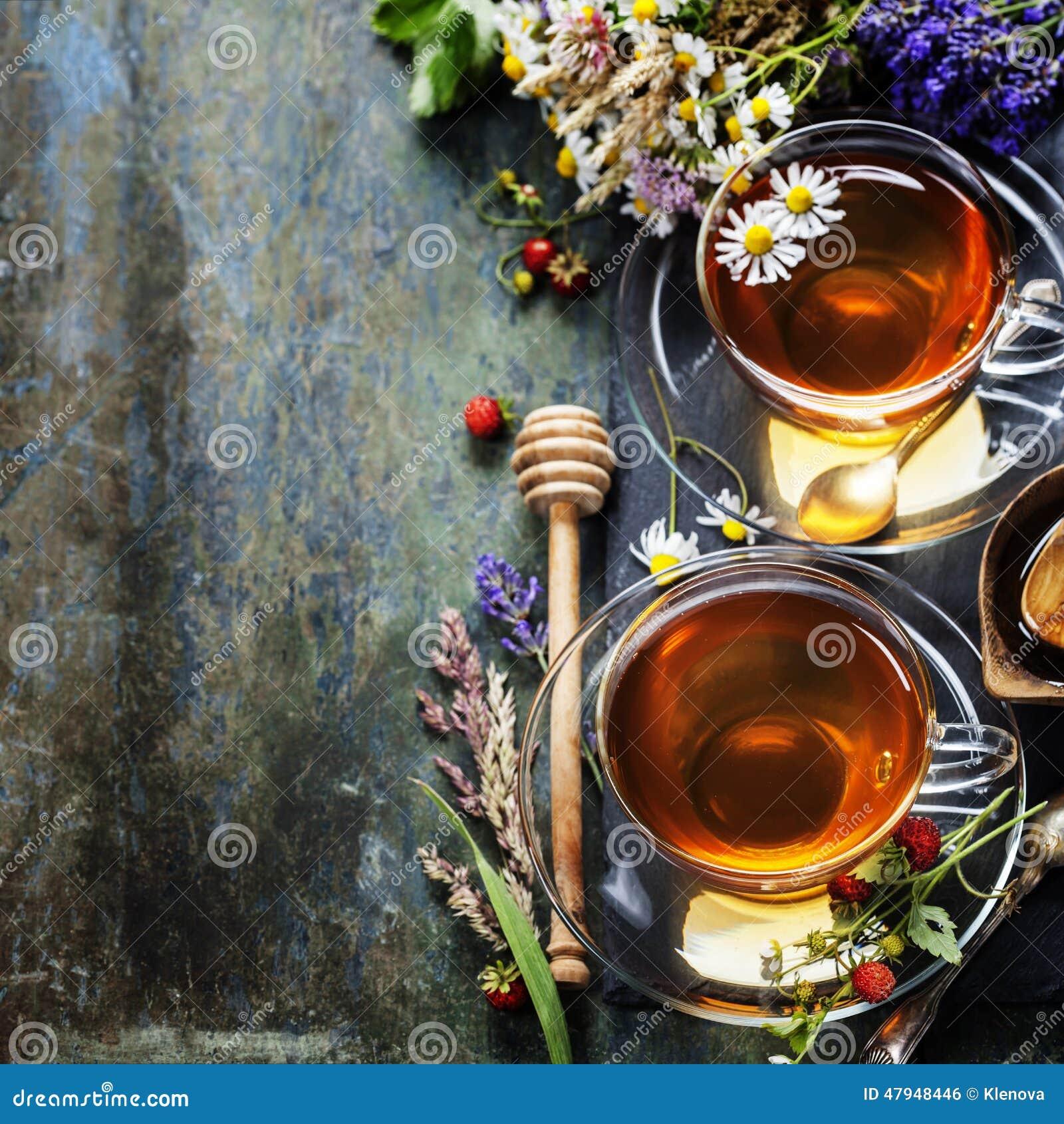 Arvense φλυτζανιών equisetum εστίασης naturopathy εκλεκτικό τσάι έγχυσης αλογουρών γυαλιού βοτανικό