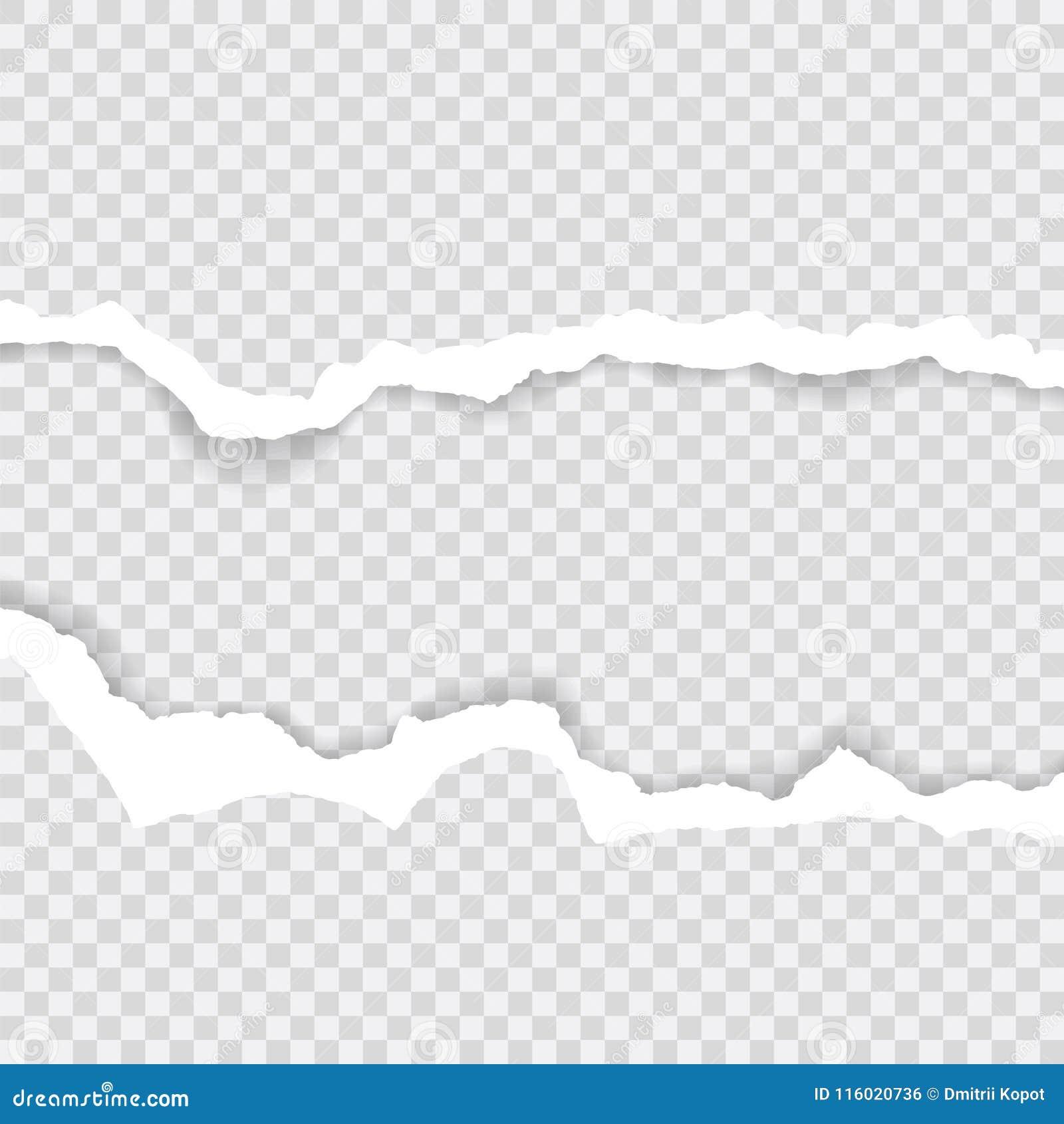 As bordas de papel rasgadas, fundo sem emenda texture horizontalmente, vetor isoladas no espaço para anunciar, bandeira do página