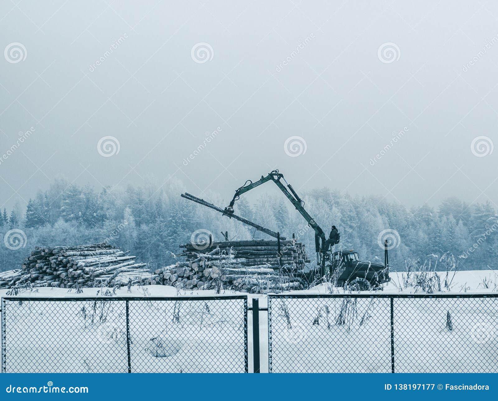 As cargas do portador da madeira entram o norte de Rússia