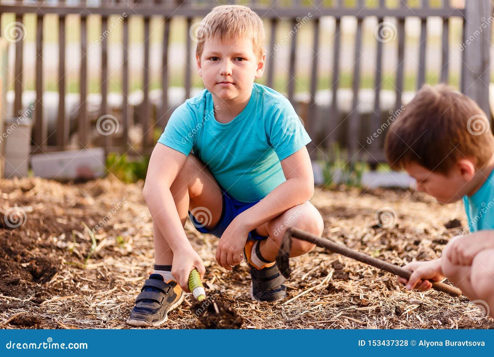 As crianças em camisas azuis estão jogando com a terra no verão, uma pá pequena do ferro
