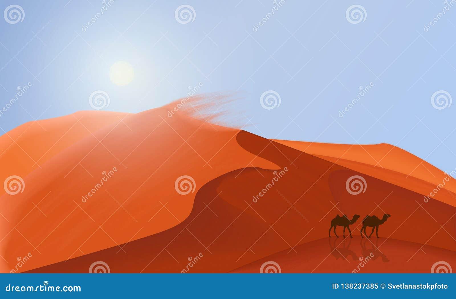 As dunas do deserto ajardinam o fundo com os camelos que andam no deserto Ilustração lisa simples do minimalismo