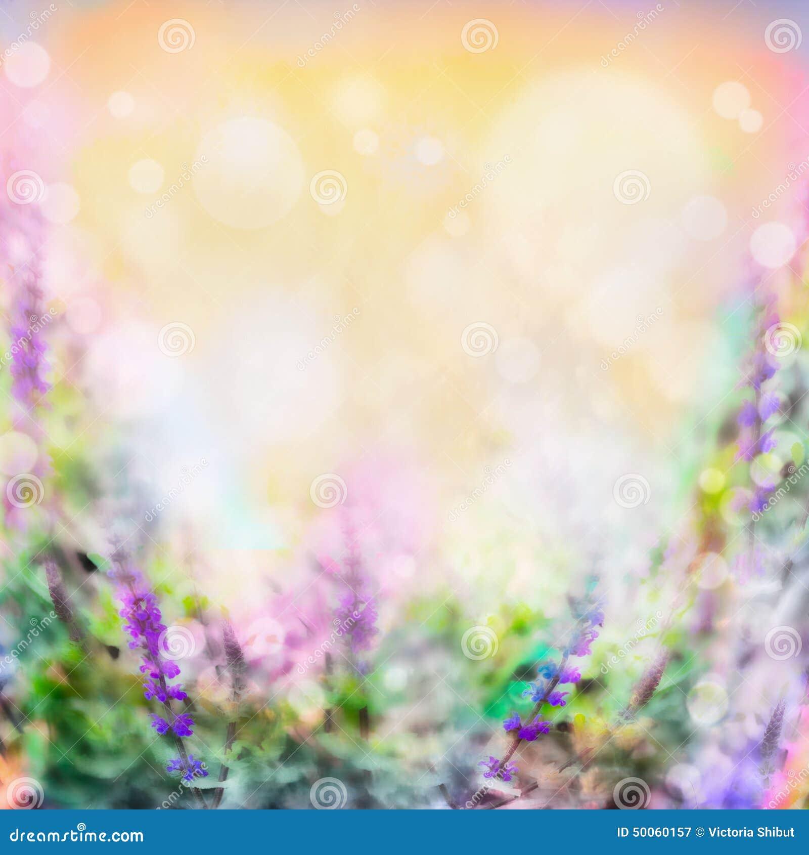 As flores roxas cor-de-rosa coloridas borraram o fundo com luz e bokeh
