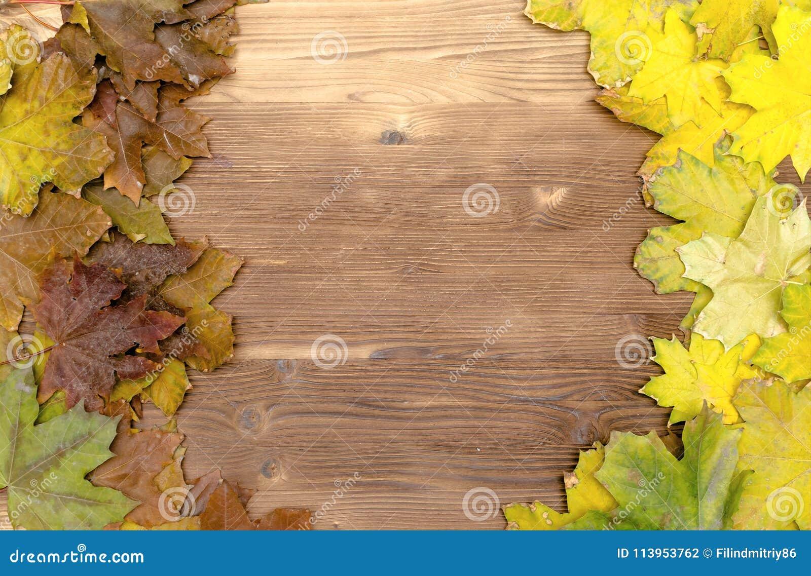 As folhas caídas outono na placa de madeira surgem o fundo com espaço da cópia