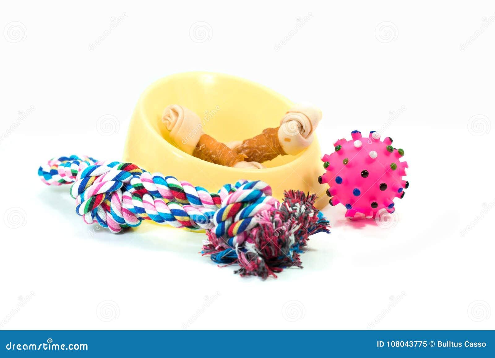 As fontes do animal de estimação ajustaram-se sobre a bacia plástica, corda, brinquedos de borracha com snac
