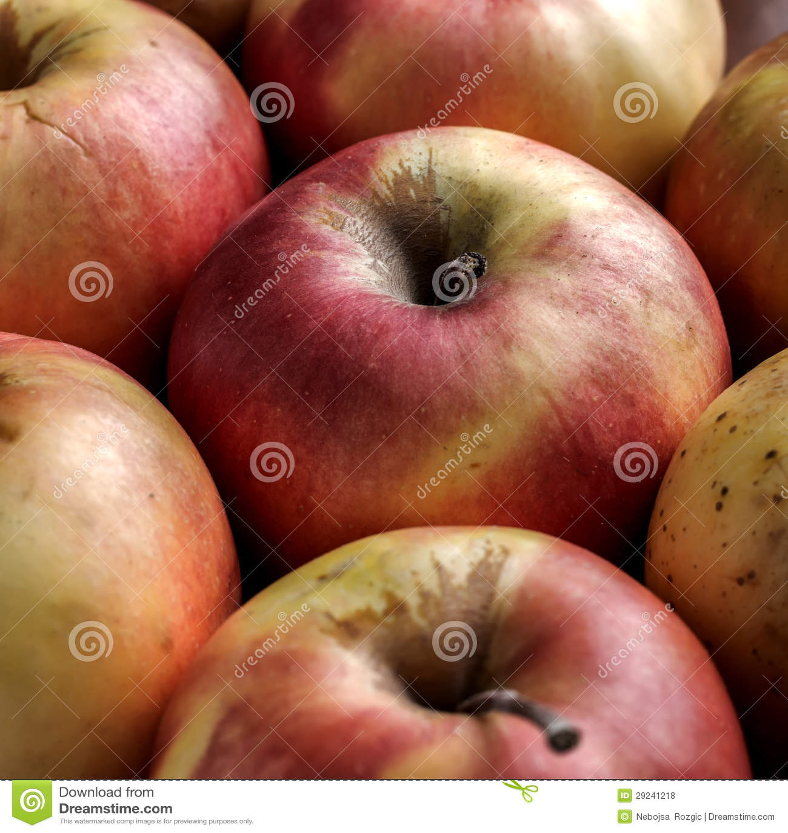 Download As maçãs fecham-se acima foto de stock. Imagem de bebida - 29241218