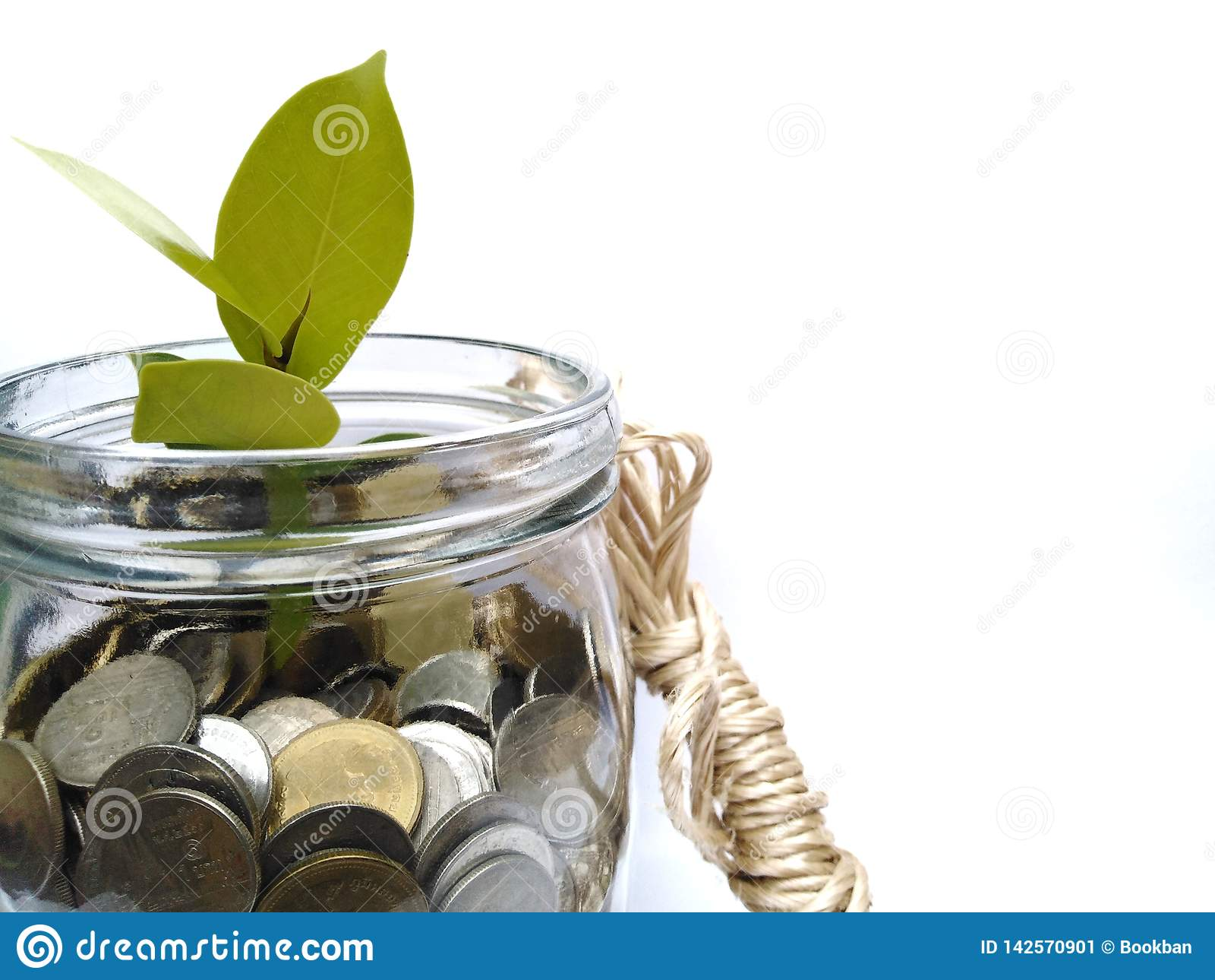 As moedas crescem como as árvores comunicam-se que investem para fazer o dinheiro crescer como uma árvore