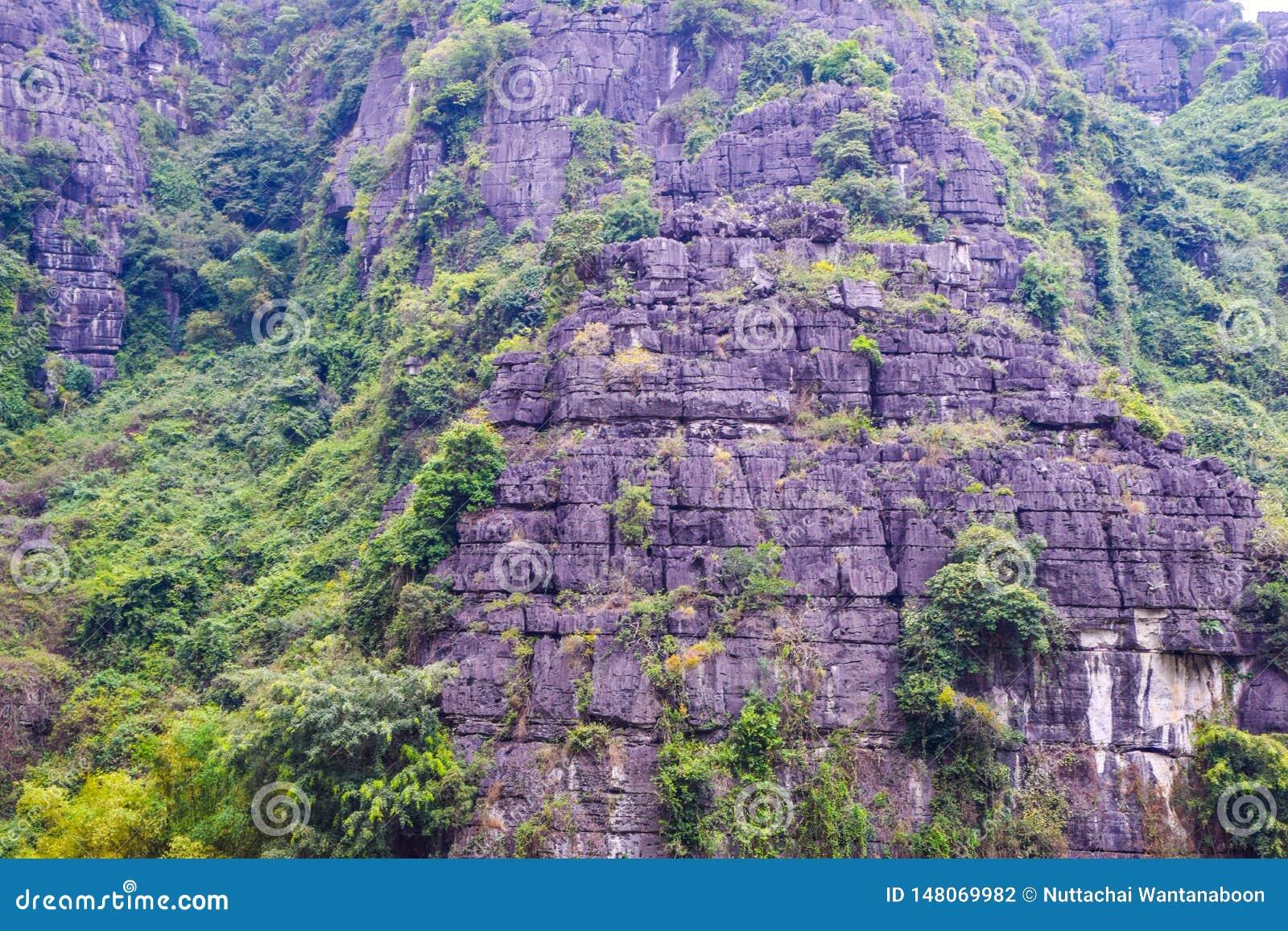 As montanhas em Vietname, fecham-se acima da rocha no lado da cara do penhasco íngreme em uma montanha e cercada por árvores verd