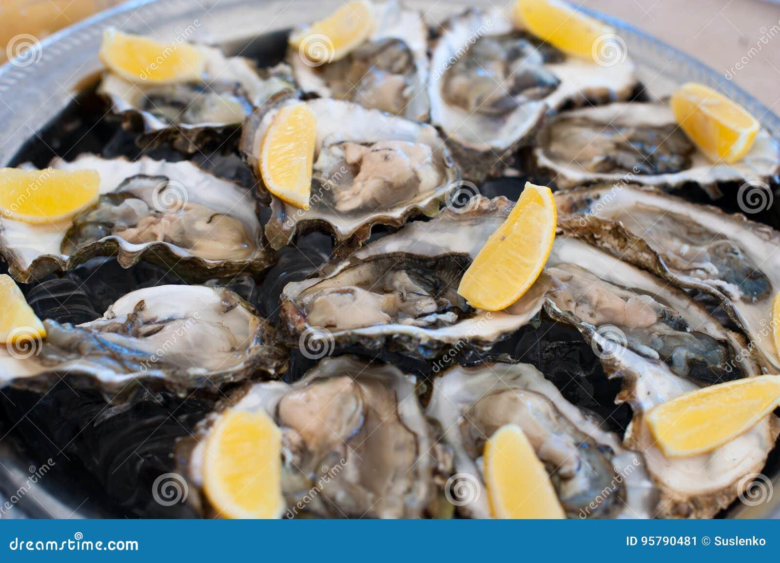 As ostras frescas encontram-se em uma bandeja de gelo e de limão