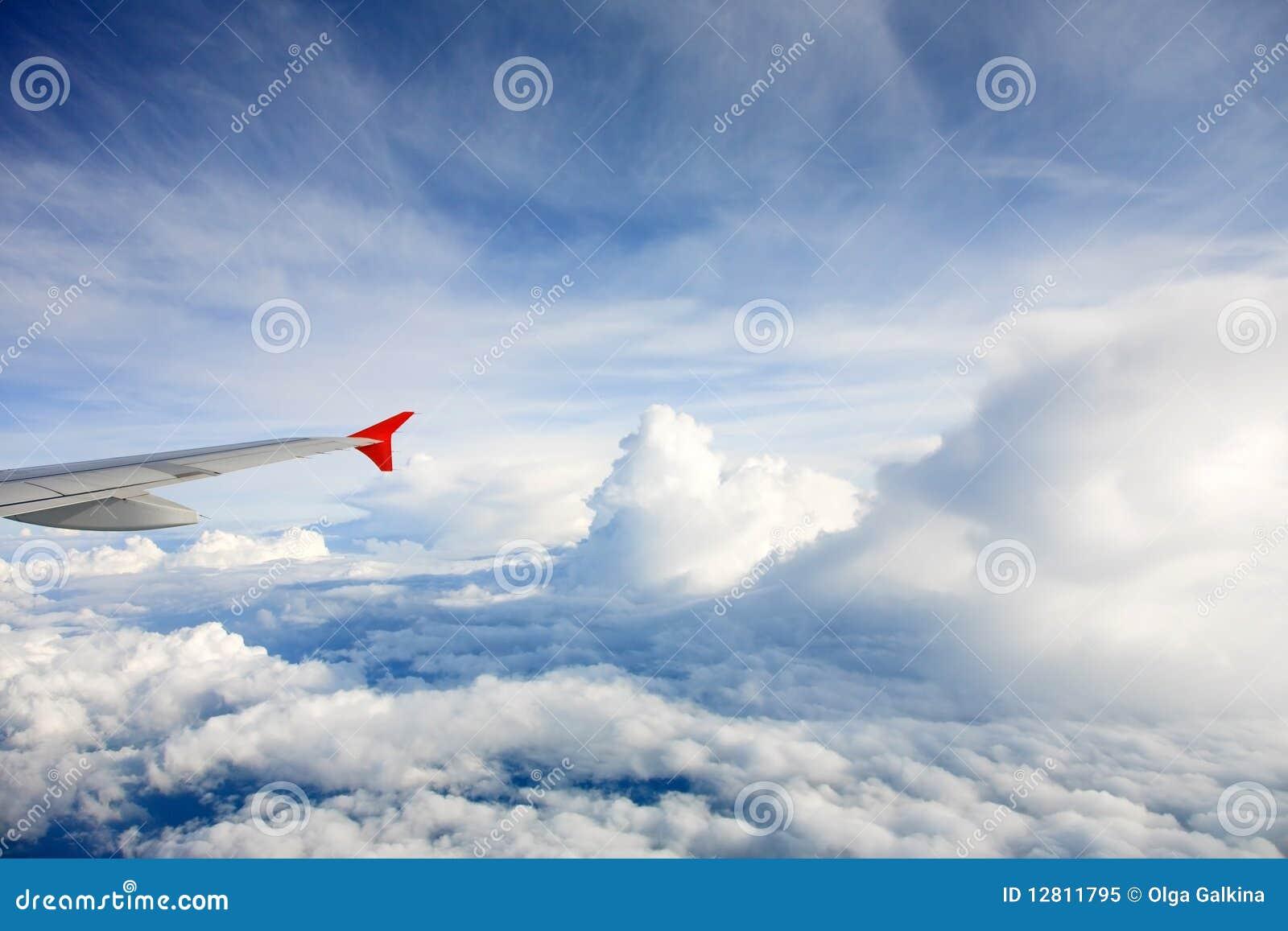 Asa do avião