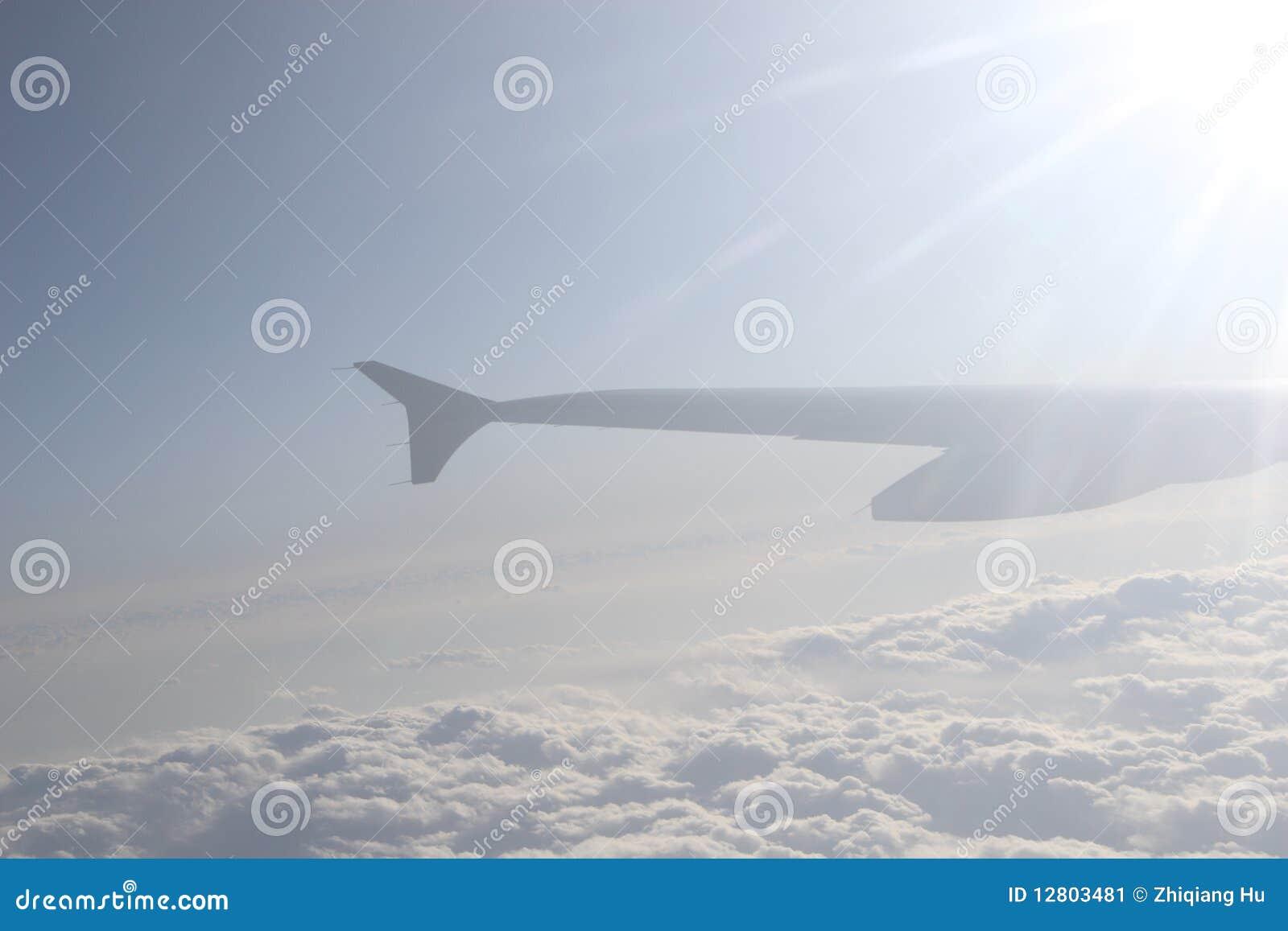 Asa do avião no vôo
