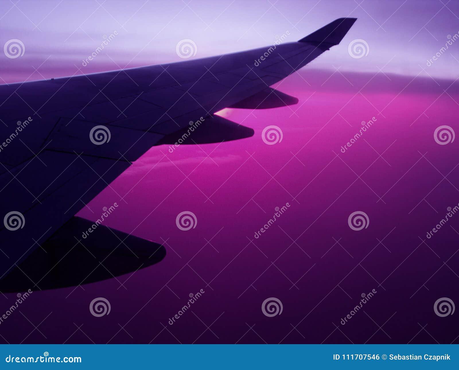 Asa do plano da viagem aérea com céu violeta
