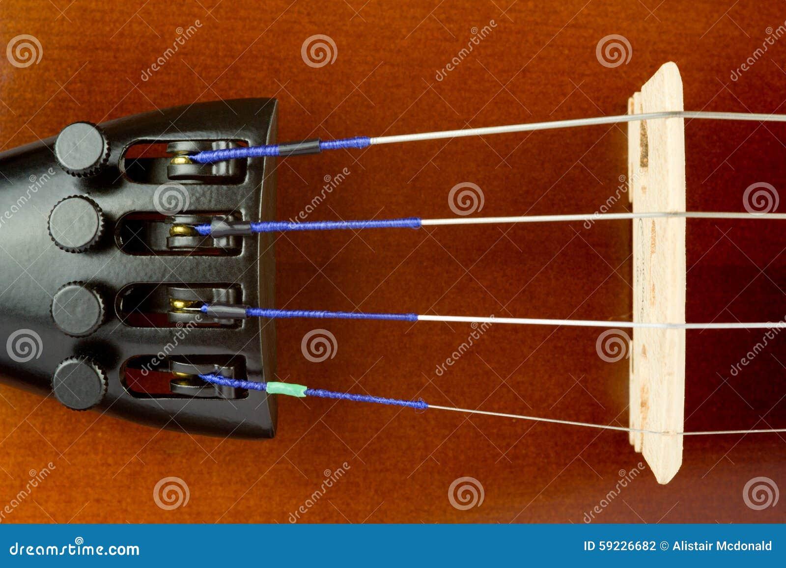 Ascendente cercano de la cola y del puente del violín