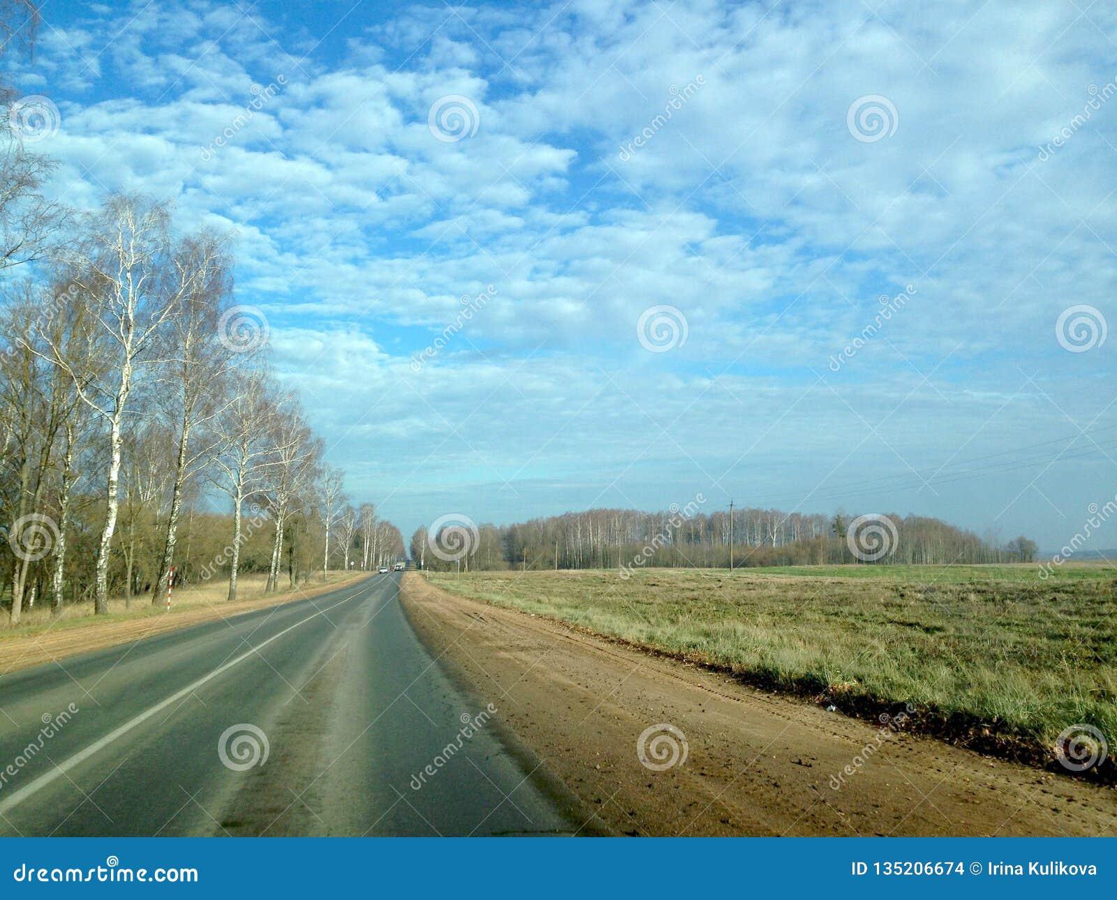 Asfalto la carretera en estilo retro a través de los campos y de los bosques contra el cielo azul con las nubes enormes