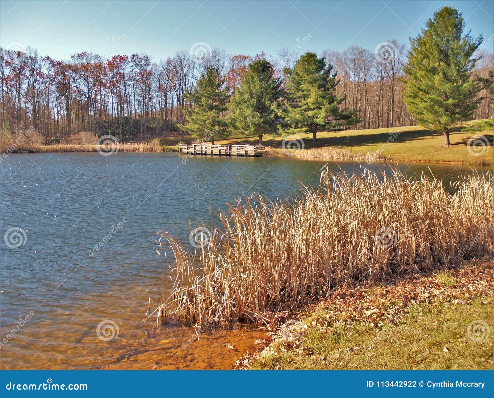 Ashe parka Pstrągowy staw w Jefferson, Pólnocna Karolina