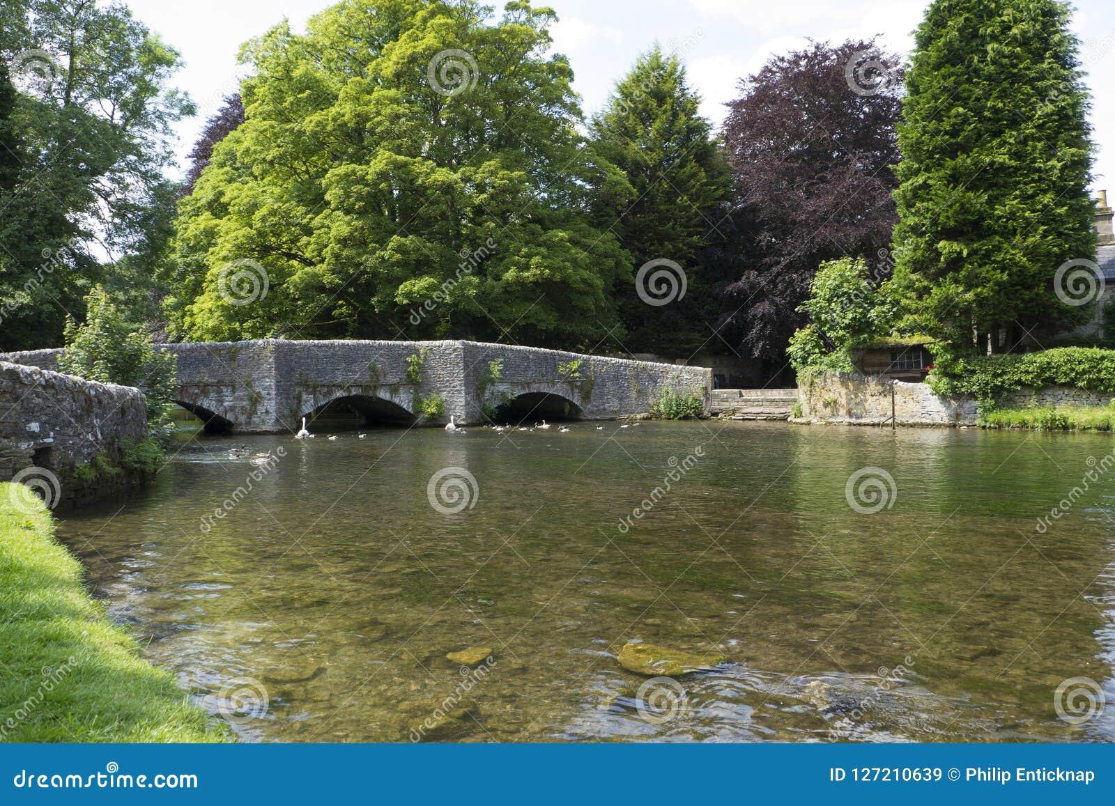 Ashford w wodzie