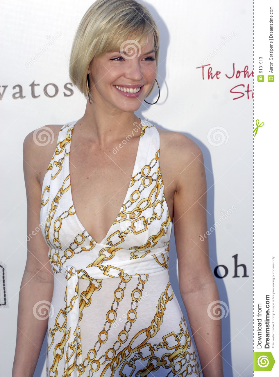 Ashley Scott On The Red Carpet. Editorial Stock Photo ...
