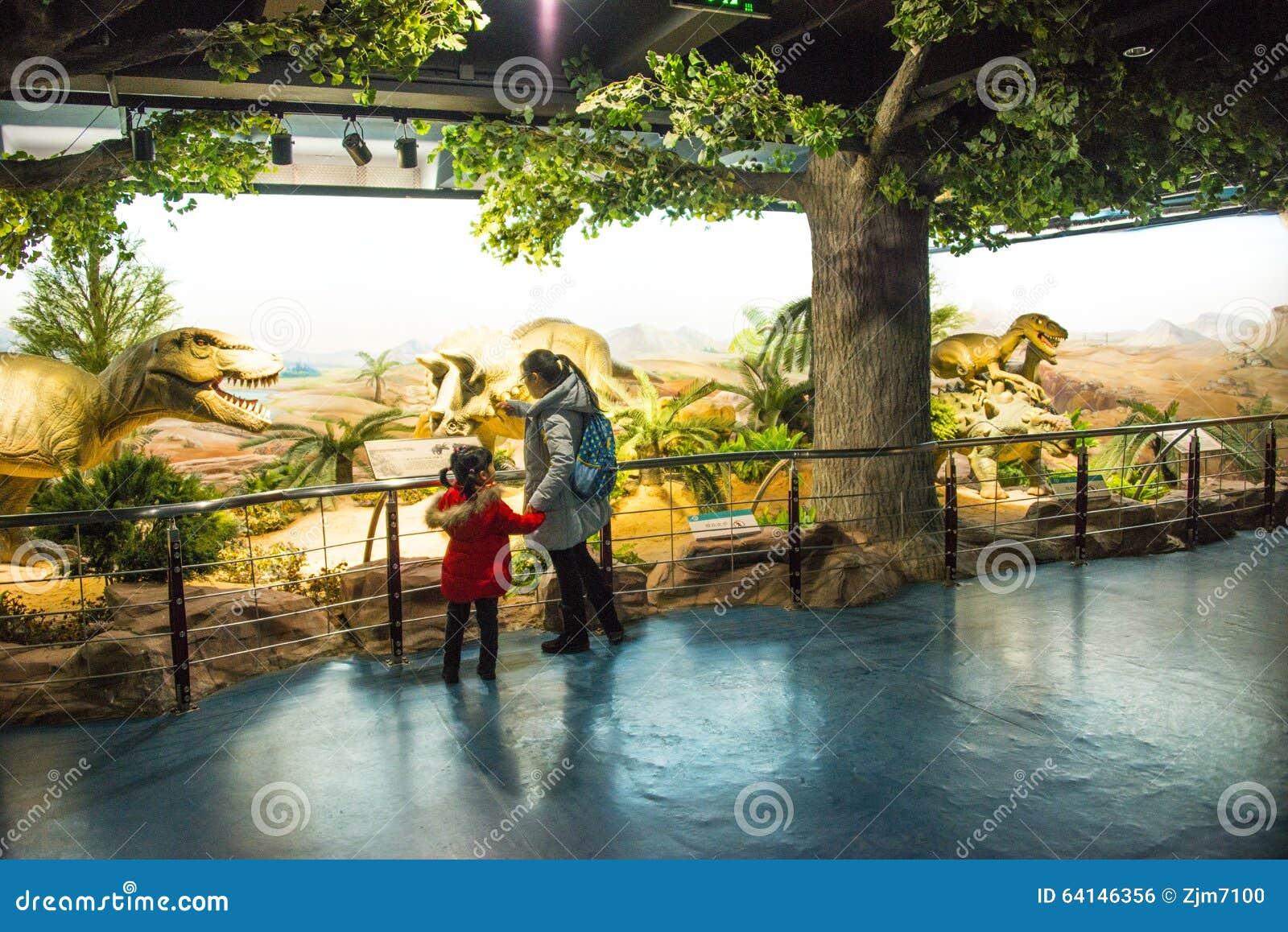 Natural History Museum Dinosaur Exhibition
