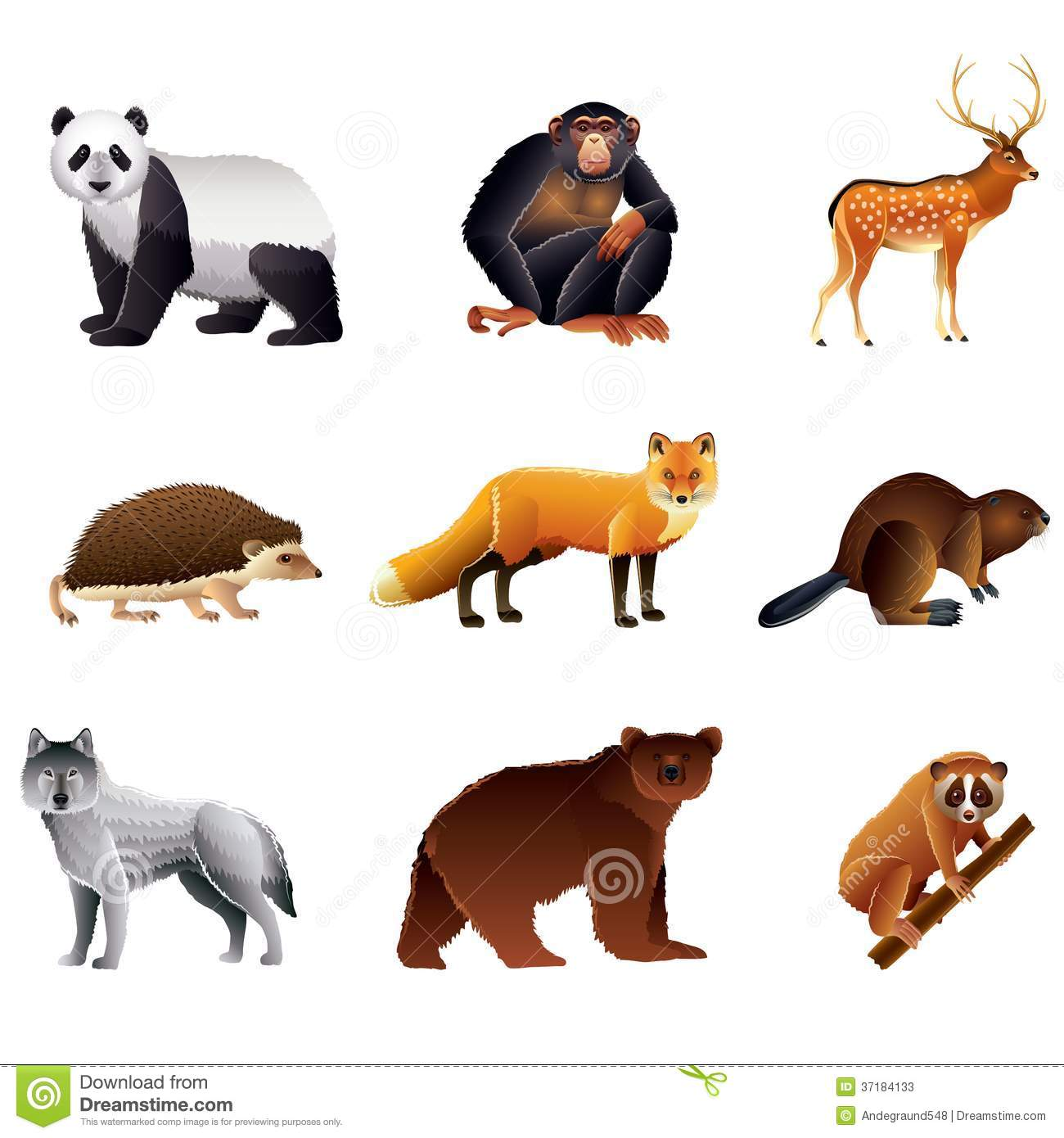 asian animals vector set stock photos image 37184133 beaver clip art images beaver clipart black and white