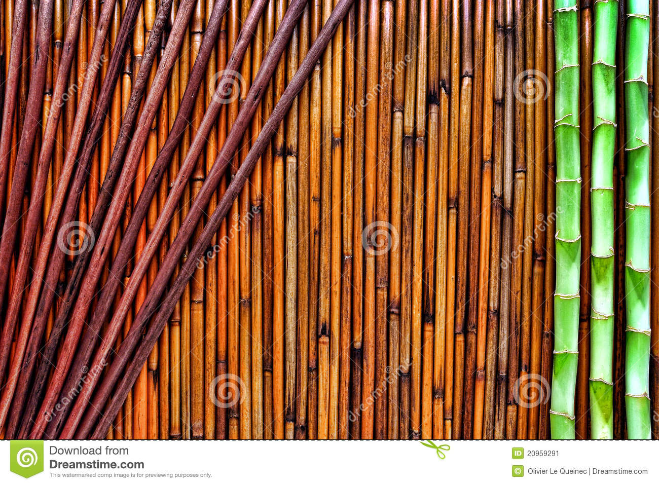 asian bamboo and reeds background stock image