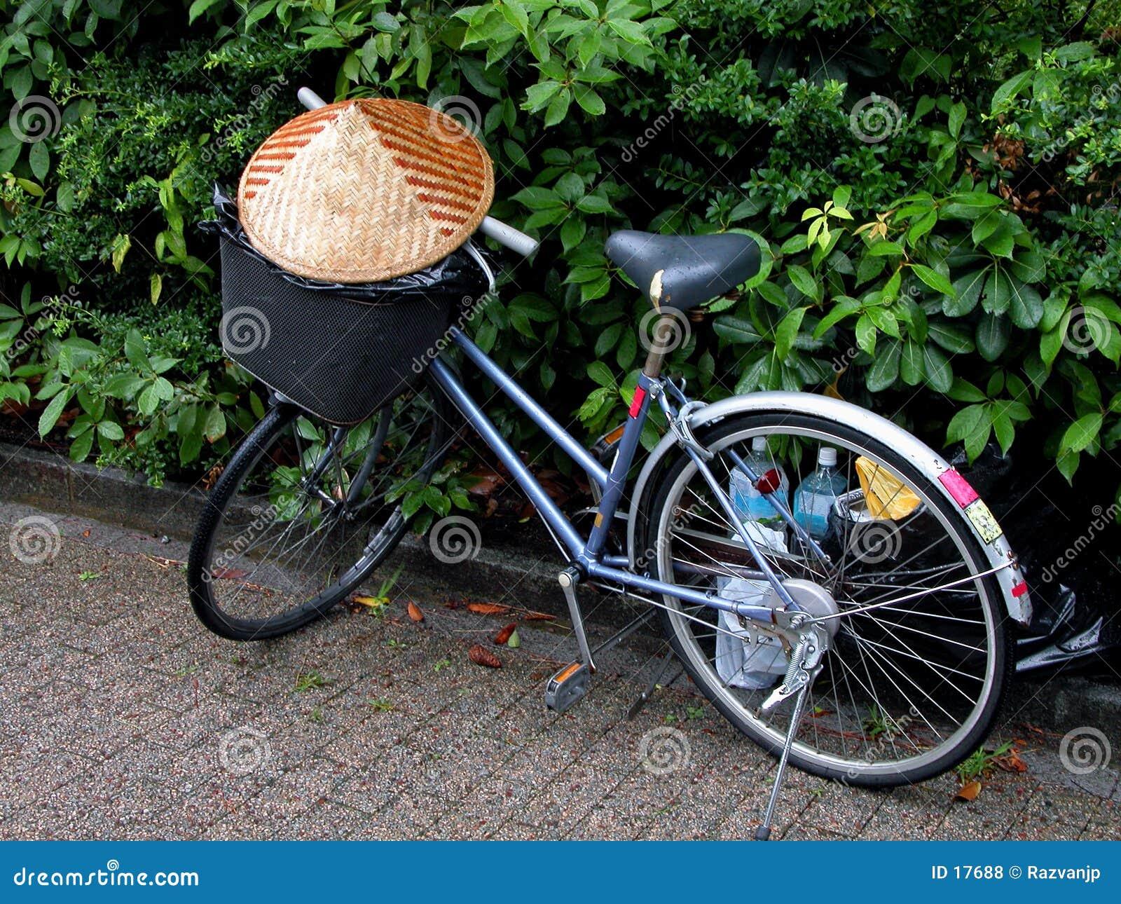 Asian bicycle