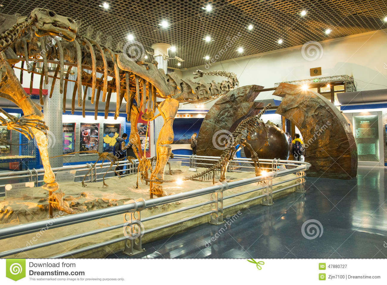 Natural History Museum Dinosaurs A Z