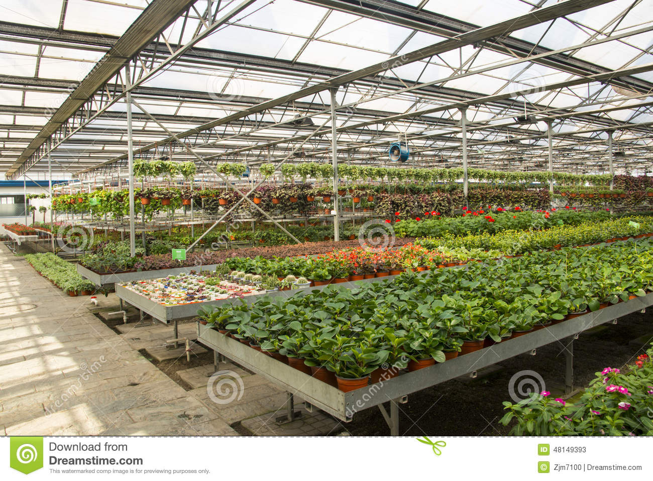 Asian China, Beijing, Geothermal Expo Garden, Greenhouse ...
