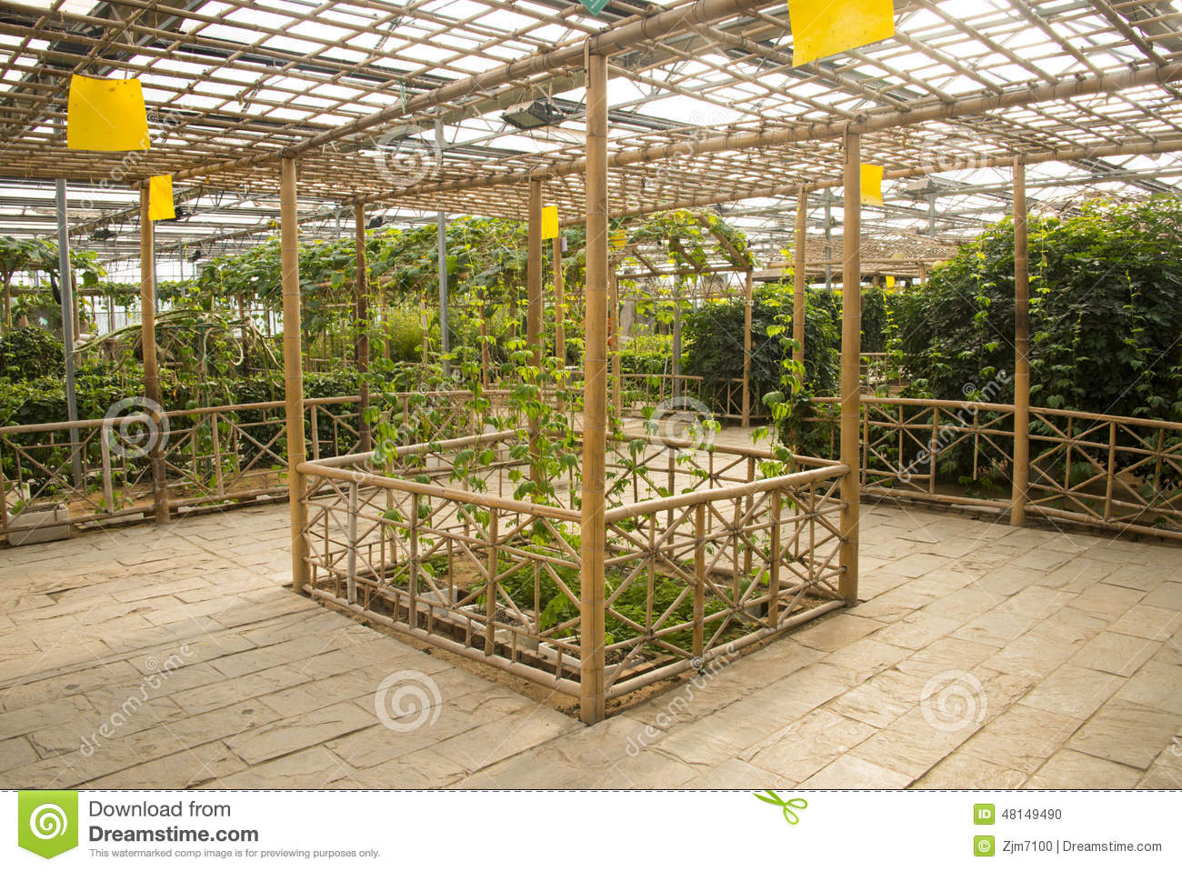Asian China, Beijing, Geothermal Expo Garden, Greenhouse Editorial ...