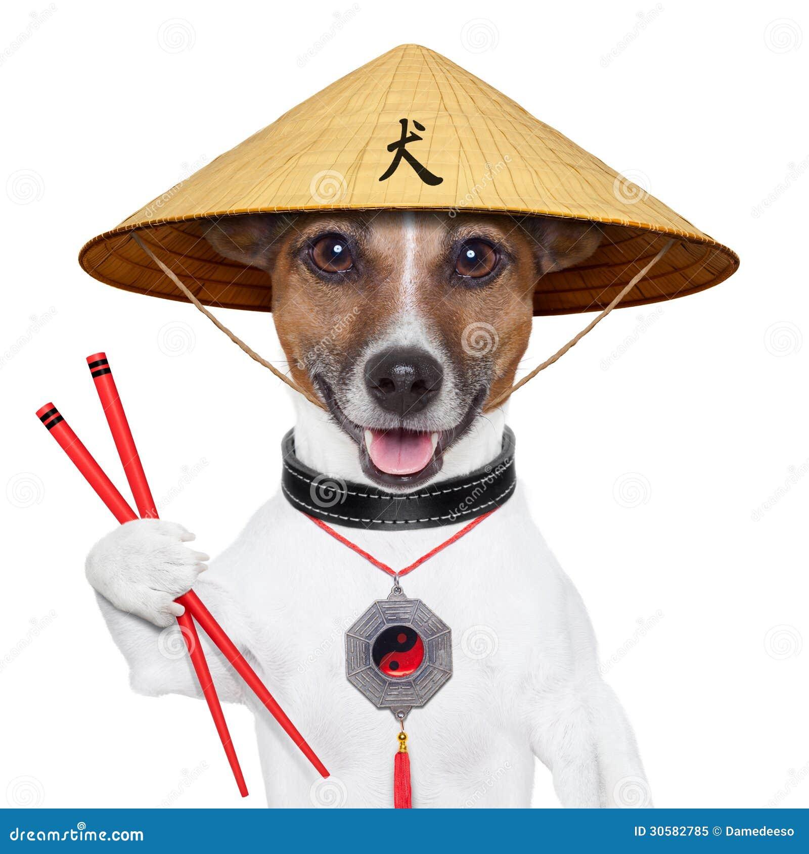 Chinese Dog Restaurant