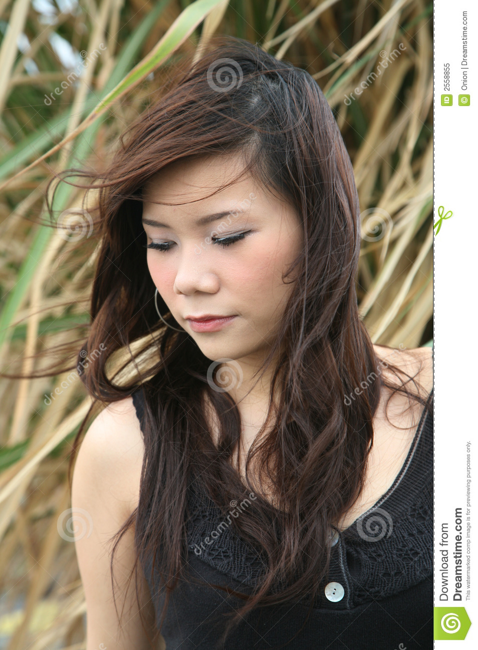 lehman asian single women Official site- join now and search for free blossomscom is the leader in online asian dating find asian women for love, dating and marriage.