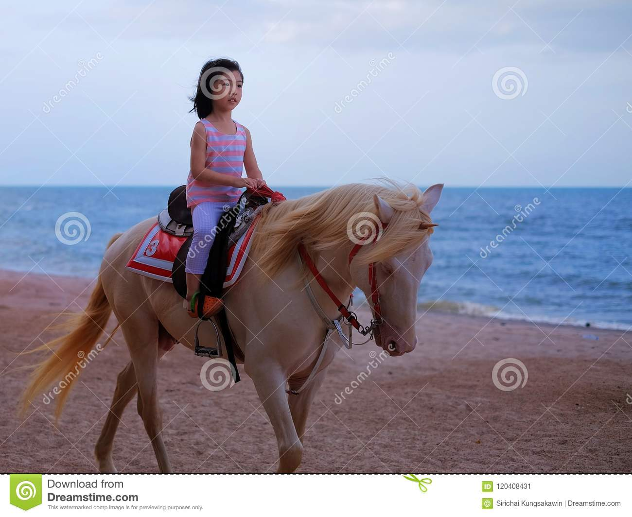 An Asian girl riding a white horse, strolling along a tropical beach on a  sunny day.