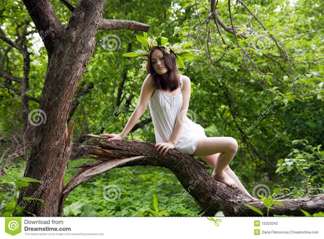 Asian Girl In White Over Forest Stock Photography Image