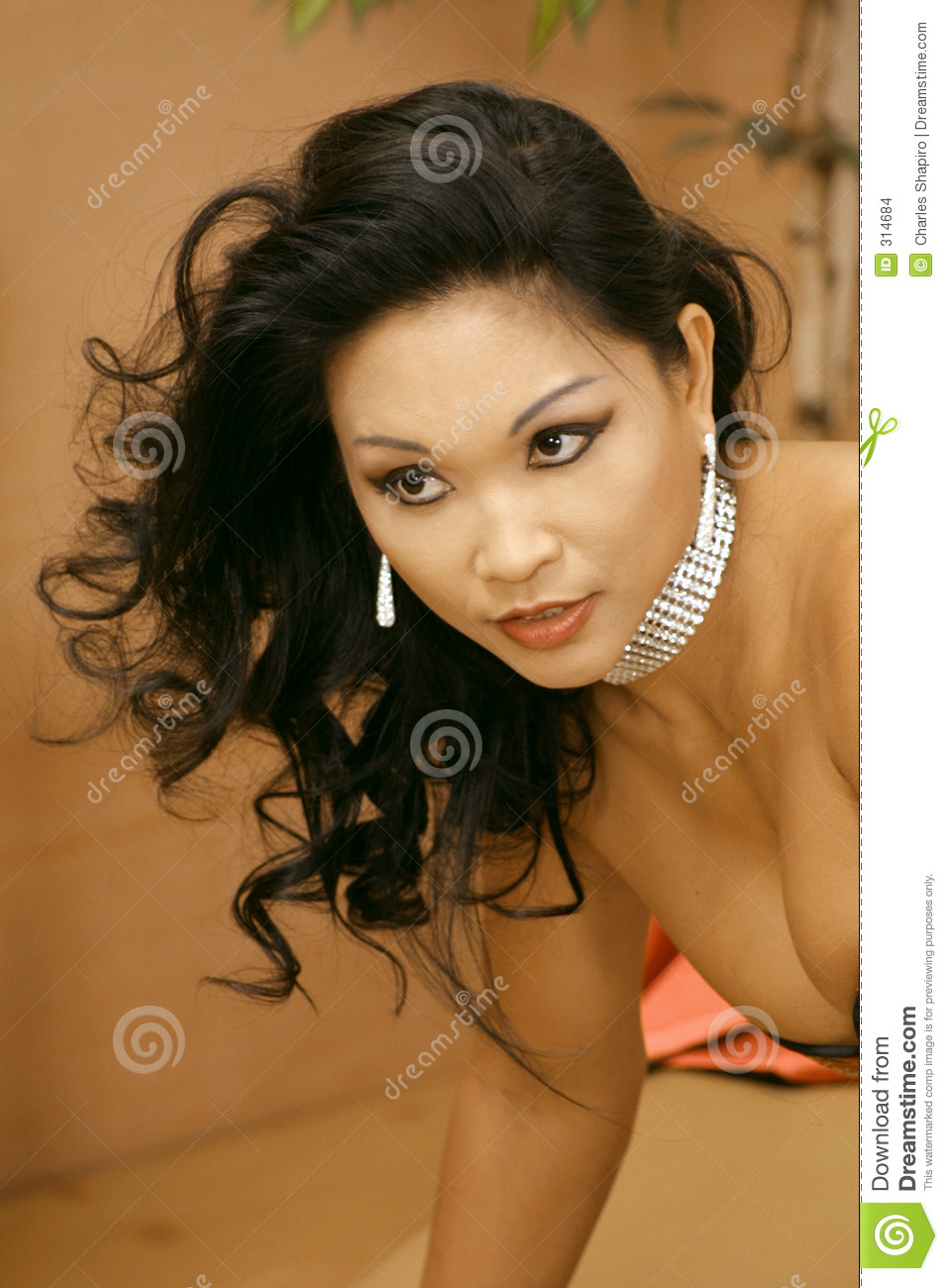 Asian Glamour Girl Stock Images Image 314684