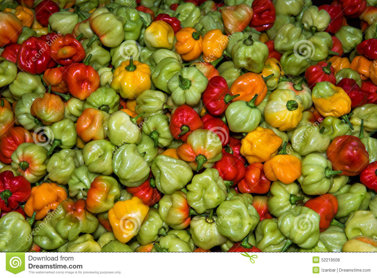 Pictures of asian peppers agree