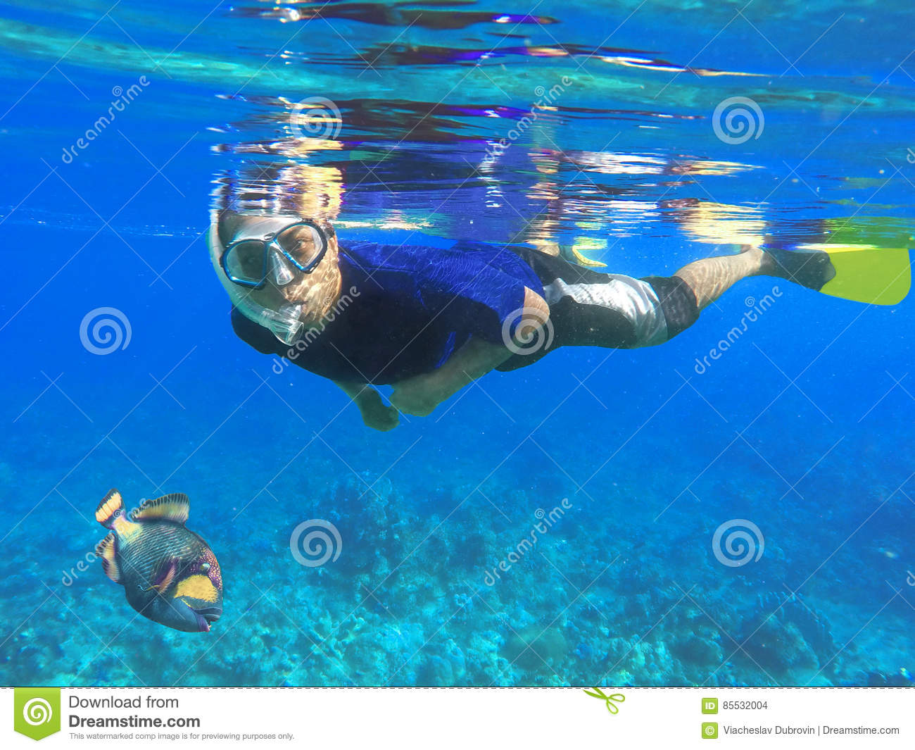 Coral reef under water stock photo for Fishing lessons near me