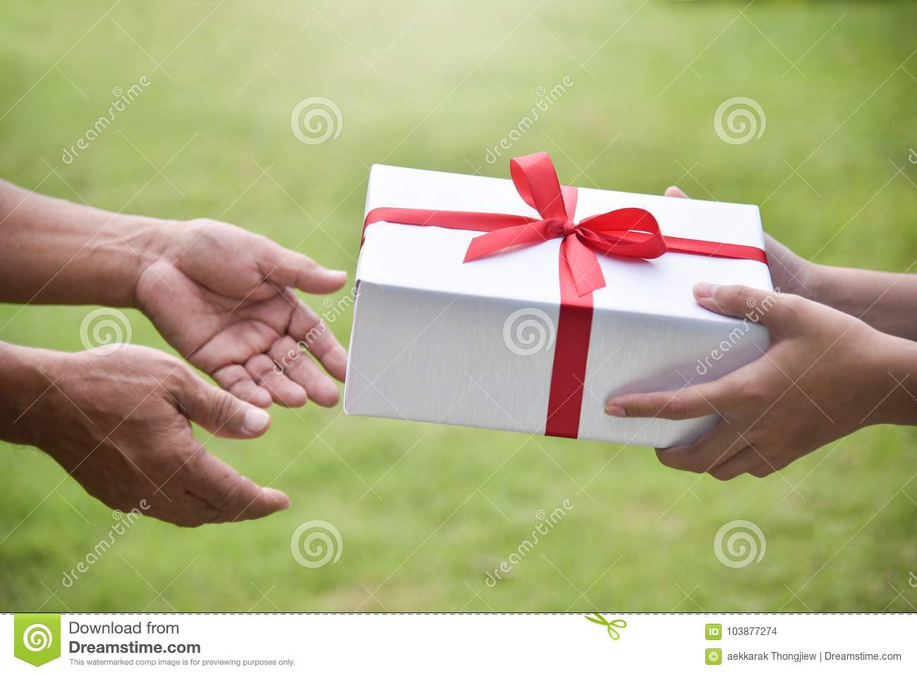 Closeup On Hands Asian Woman Giving A White Gift Box To Elderly Man Green Nature Background For Birthday Christmas And New Year