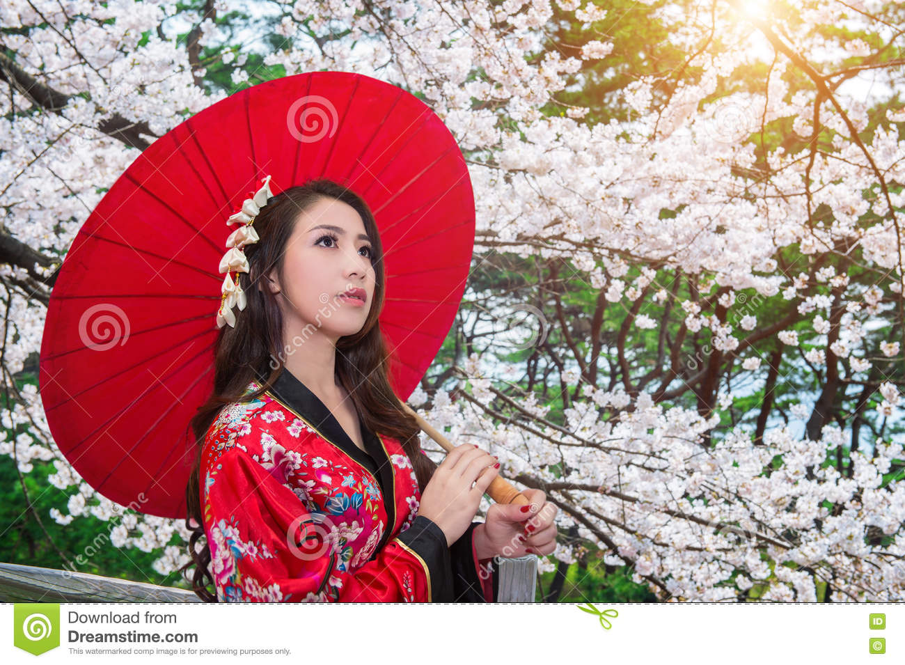 64168f16e118a Asian woman wearing traditional japanese kimono with red umbrella and  cherry blossom.