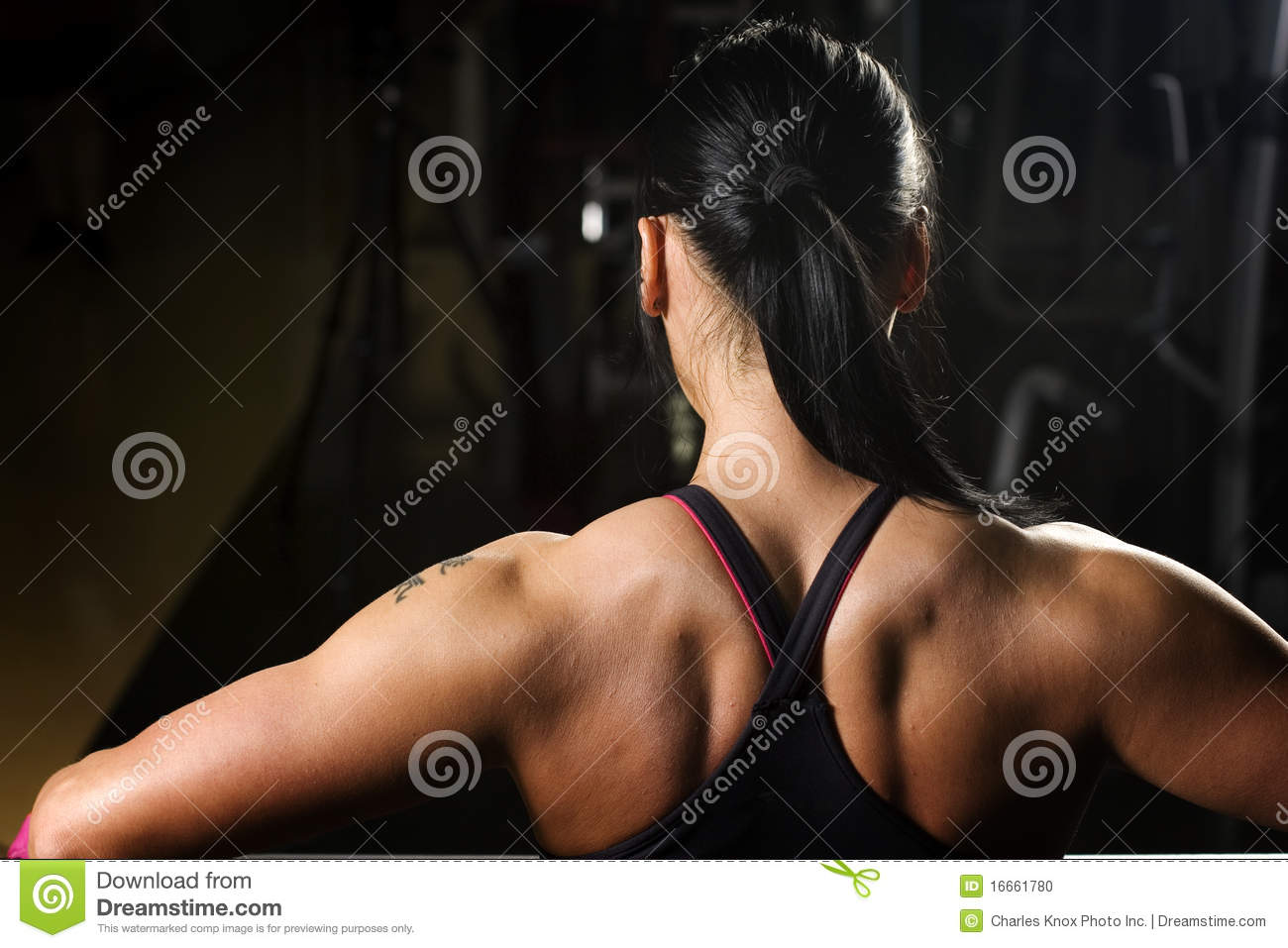 Asian Woman Working Out In Gym Stock Photo - Image 16661780-3090
