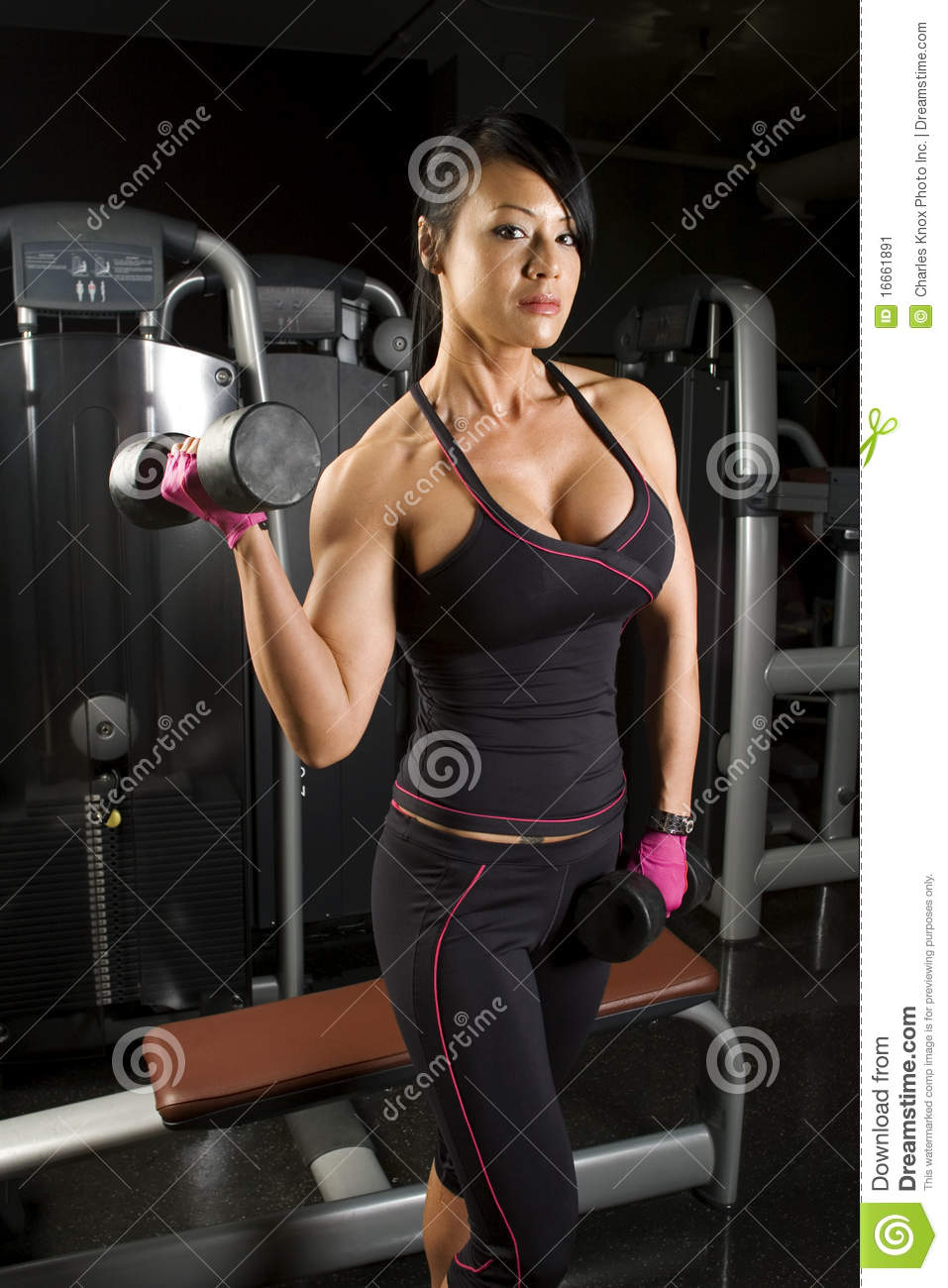 Asian Woman Working Out With Weights Stock Image - Image -1053
